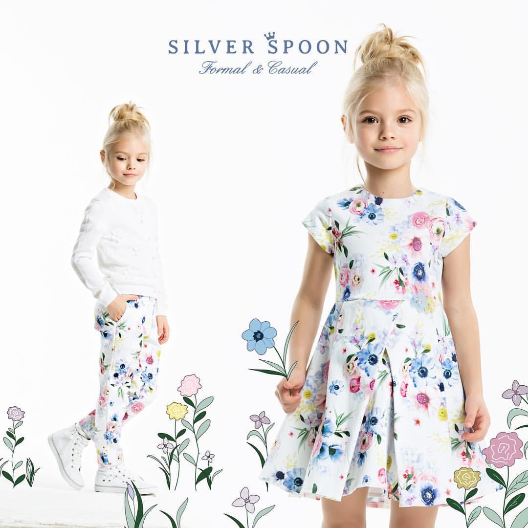 Silver Spoon SS 2017