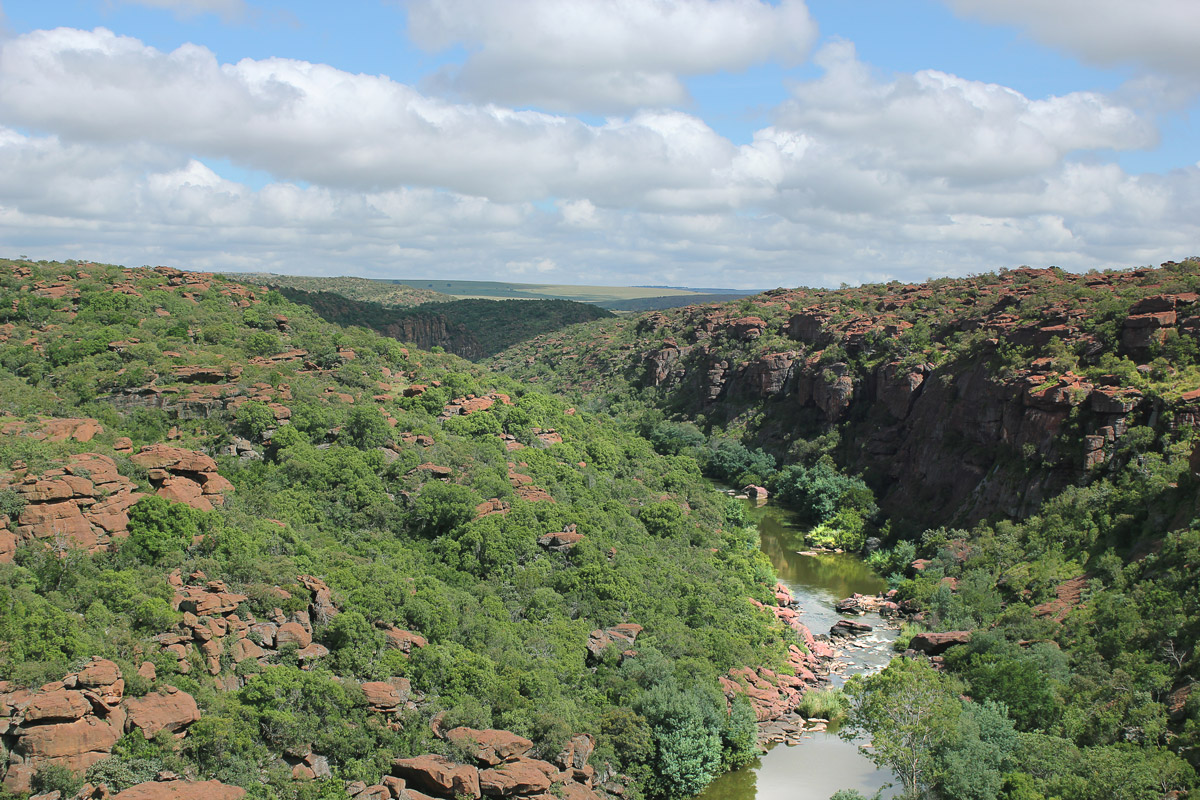 Wilge River – Ezemvelo Reserve.