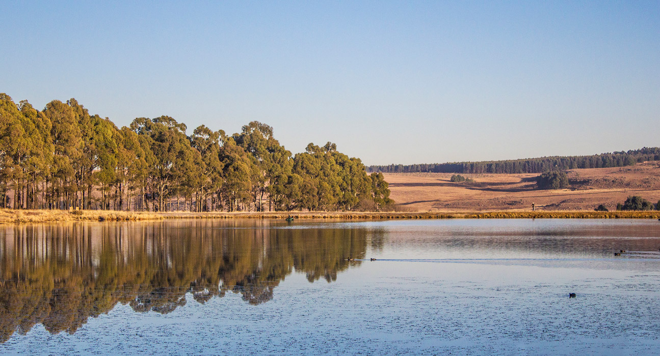 Lake Chrysabel on the Millstream Trout Farm.