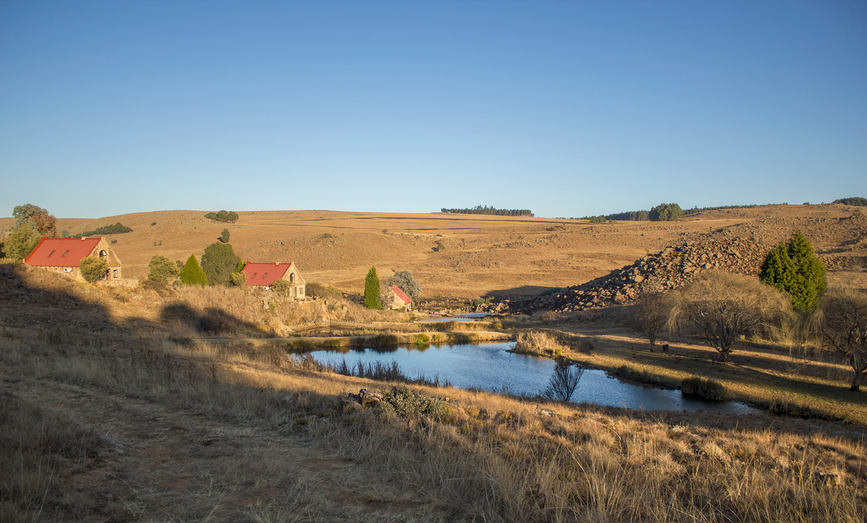 The Weir – Millstream.