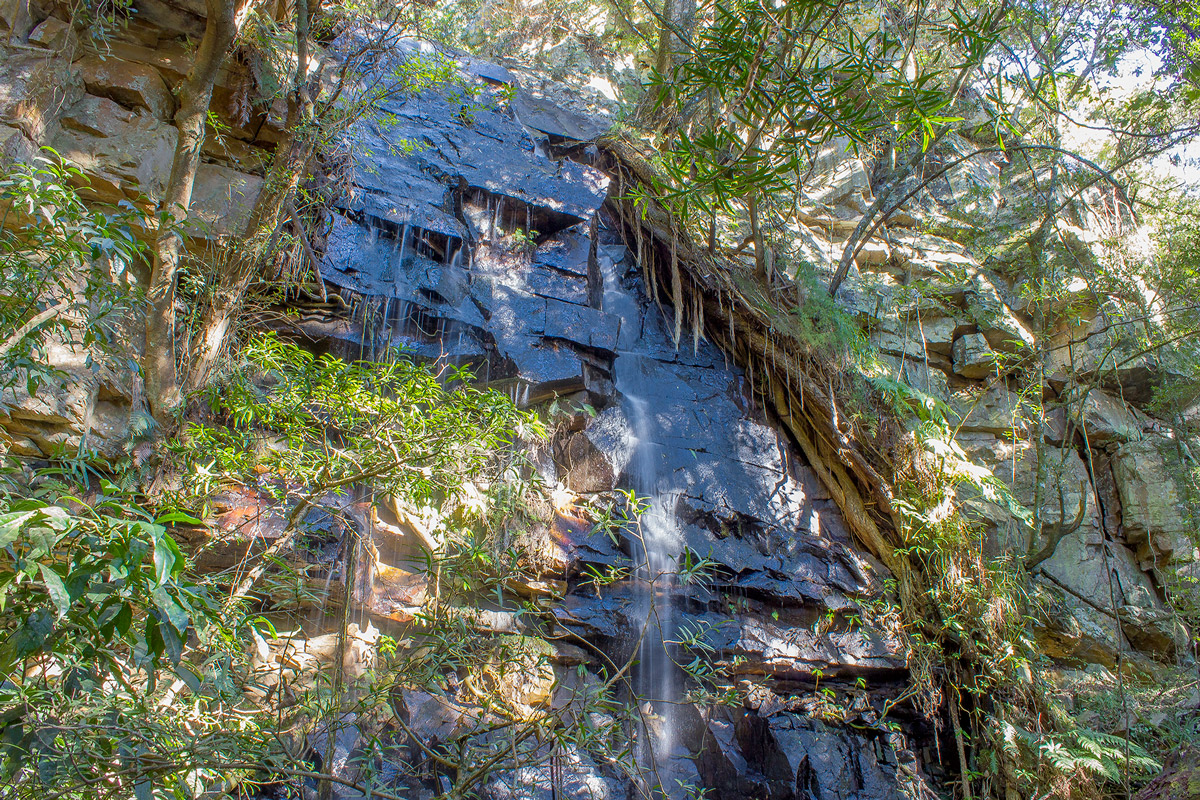 Day 2 – One of the many waterfalls on the Bladdernut track
