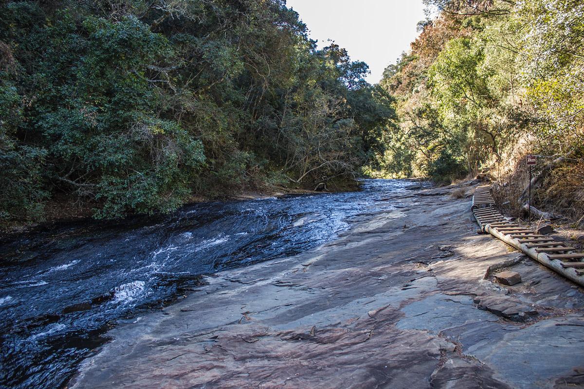 Day 2 – Bankspruit river
