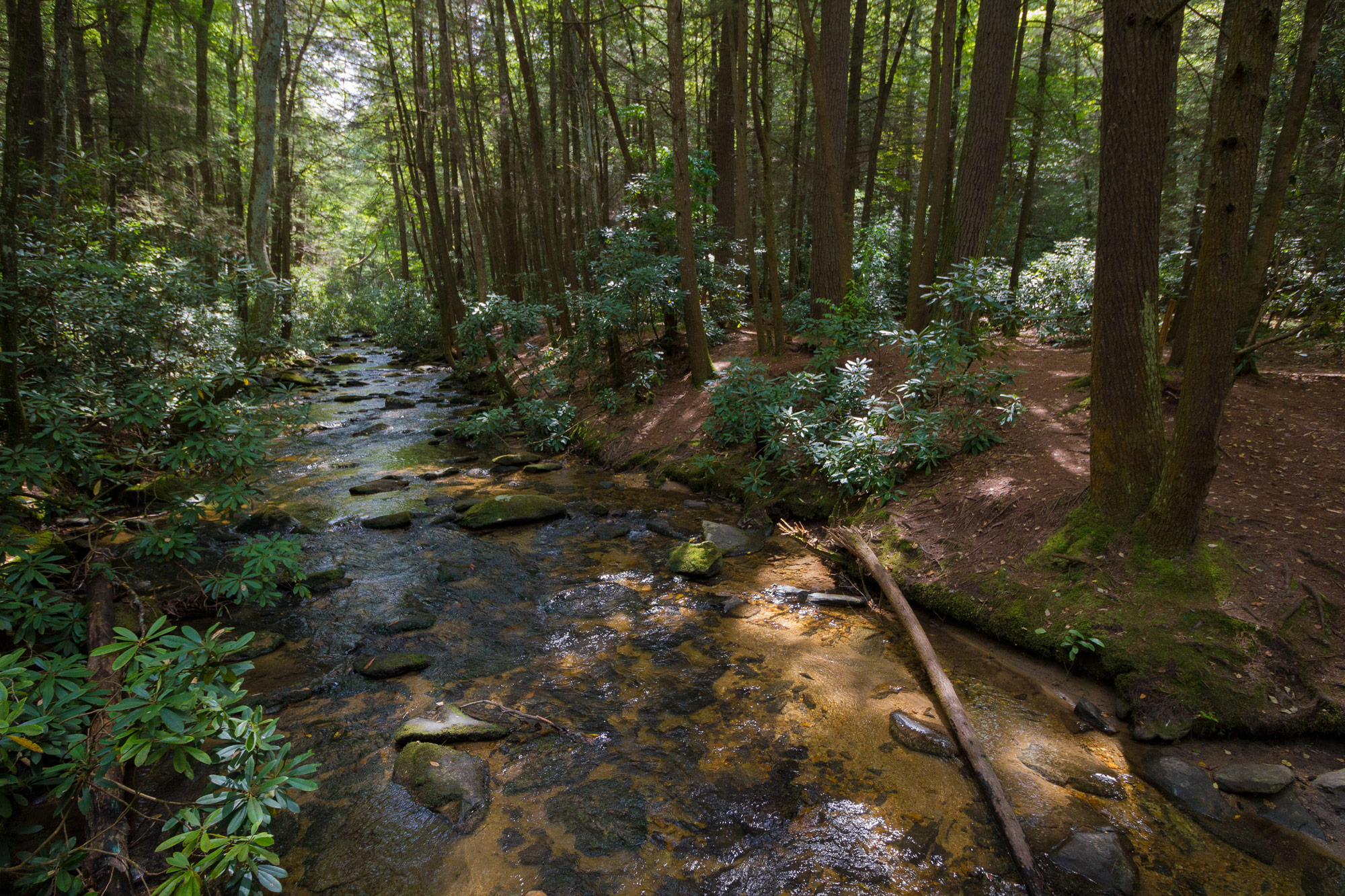 A river near Three Forks, Appalachian Trail, Georgia