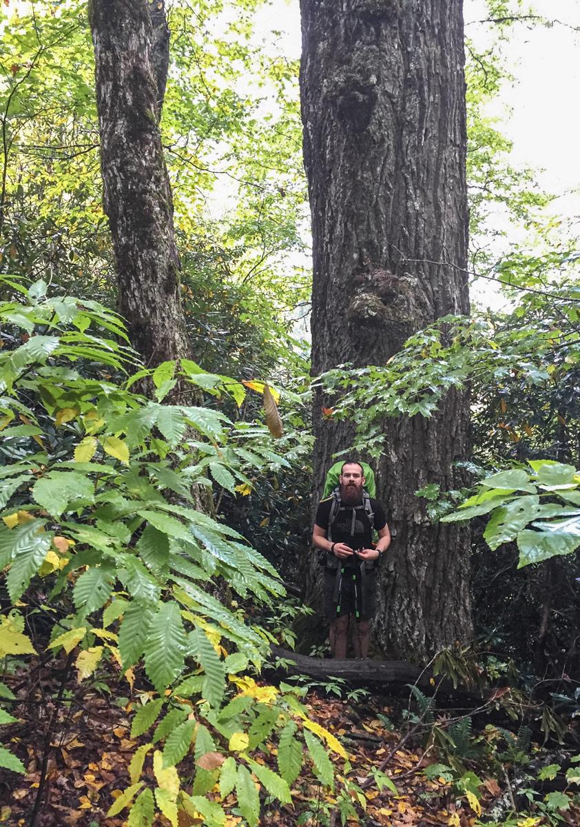 15 North Carolina Nantahala Forest.jpg