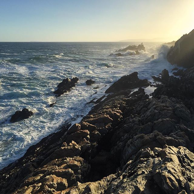 The last hours of the day was spent with a little bit of port, watching wave after wave crash into the rocks below. Just this one afternoon would've made the entire hike worth it. #sunset #ocean #waves #rocks #sofar #otter #ottertrail #hike #hiking #thisissouthafrica #southafrica