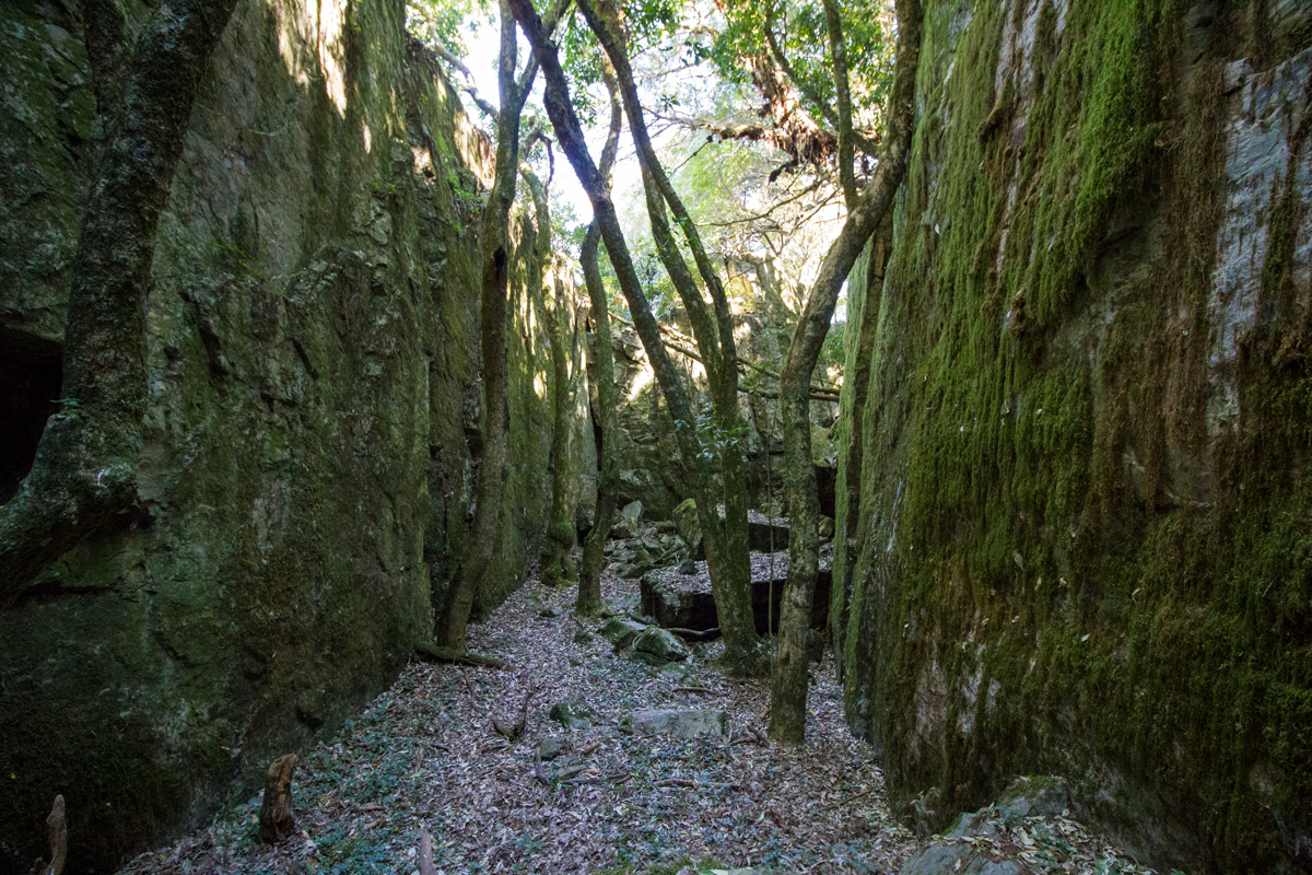 Stone corridors  –  Day 1,  Kaapsche Hoop to Flor  ence Hill Hut.  Click to enlarge.