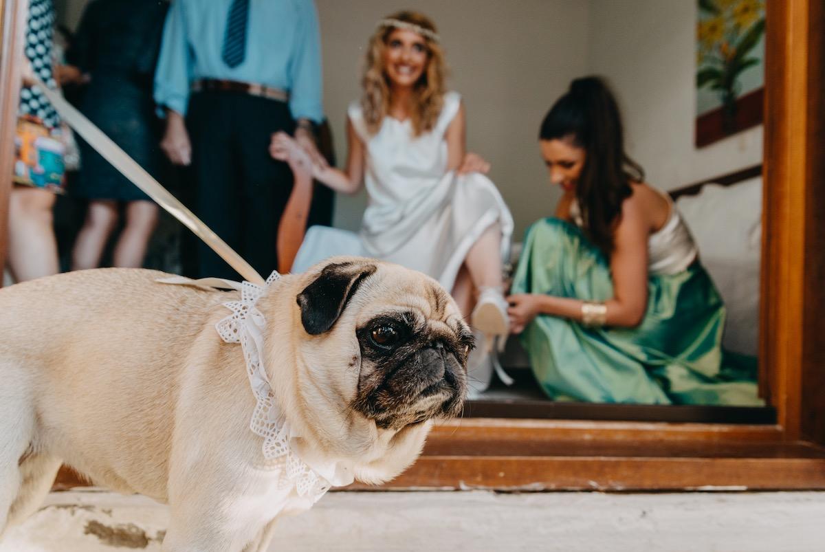 Real brides, ILIANA (by ALKMINI)