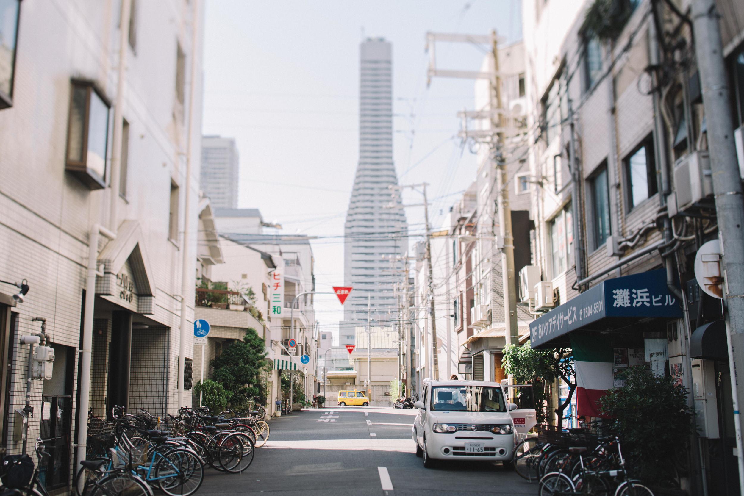 Japan, DC Photography, Dan Chern Photography, Bay Area Photography, Wedding Photography, Travel, Travel Photography, Tokyo, Kyoto, Odaiba, Osaka, Osaka Aquarium