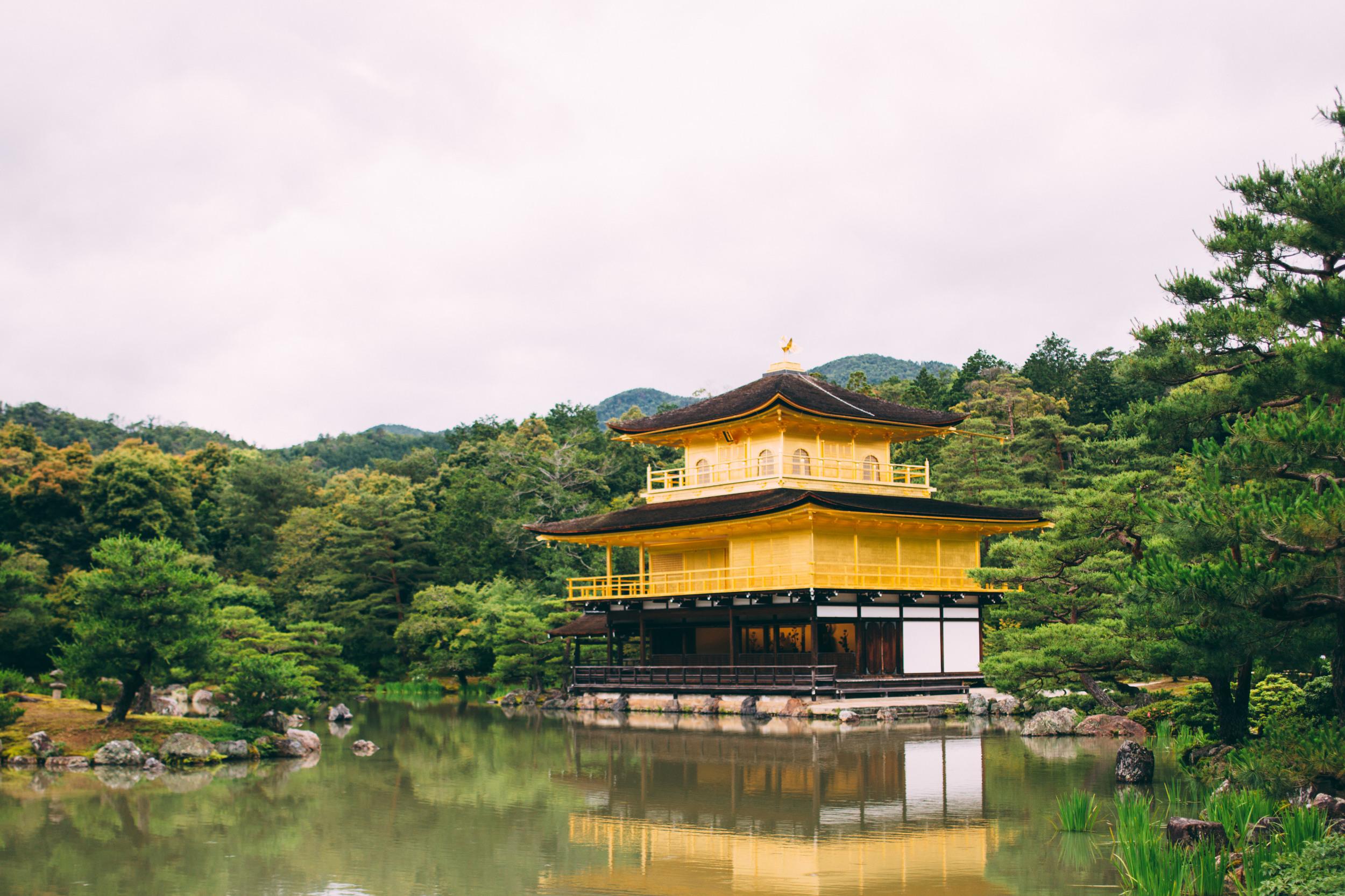 Japan, DC Photography, Dan Chern Photography, Bay Area Photography, Wedding Photography, Travel, Travel Photography, Tokyo, Kyoto, Odaiba, Osaka, Bamboo Grove, Bamboo, Golden Pavillion