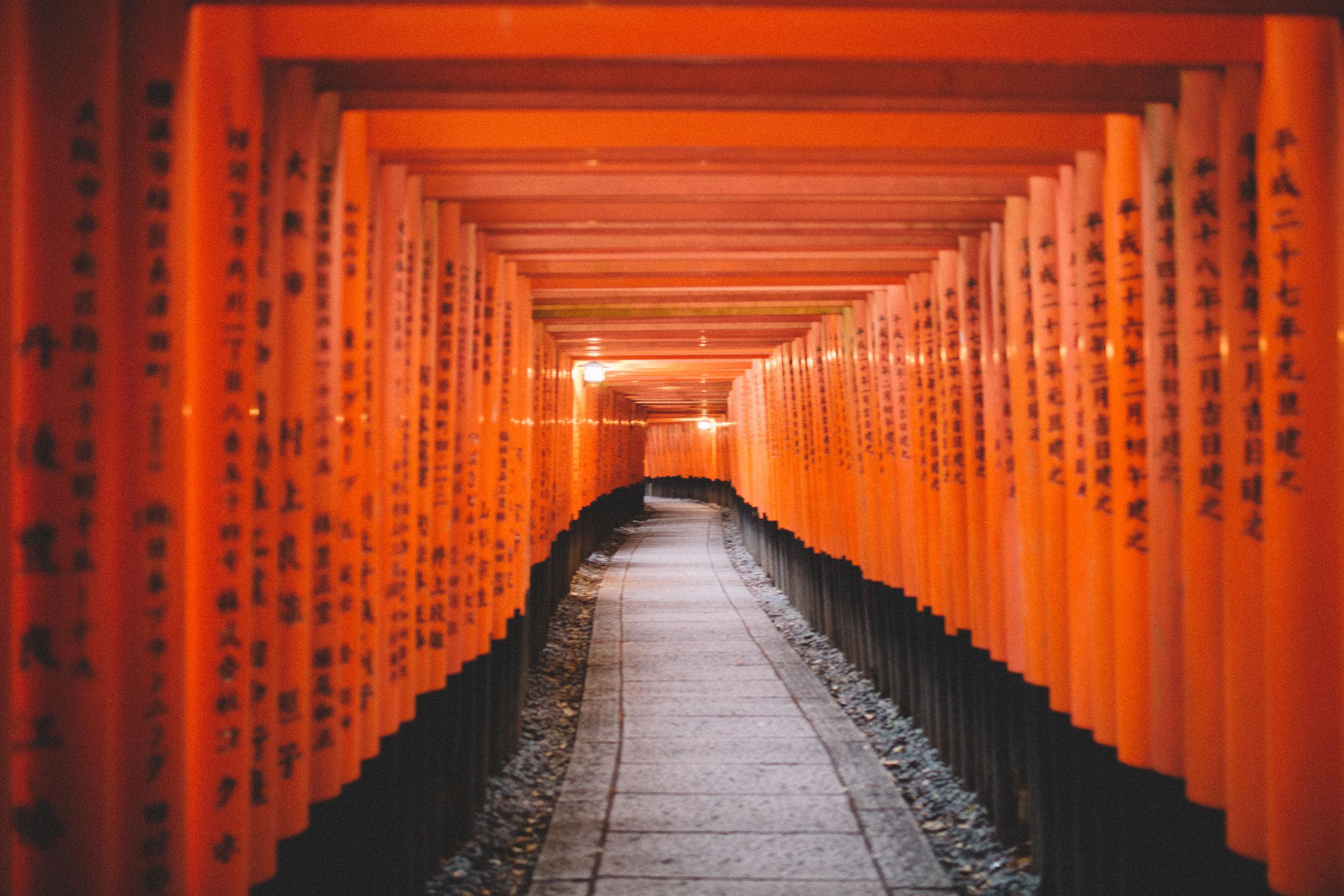 Japan, DC Photography, Dan Chern Photography, Bay Area Photography, Wedding Photography, Travel, Travel Photography, Tokyo, Kyoto, Odaiba, Osaka, Bamboo Grove, Bamboo, 10000 Torii Gates, Shrines
