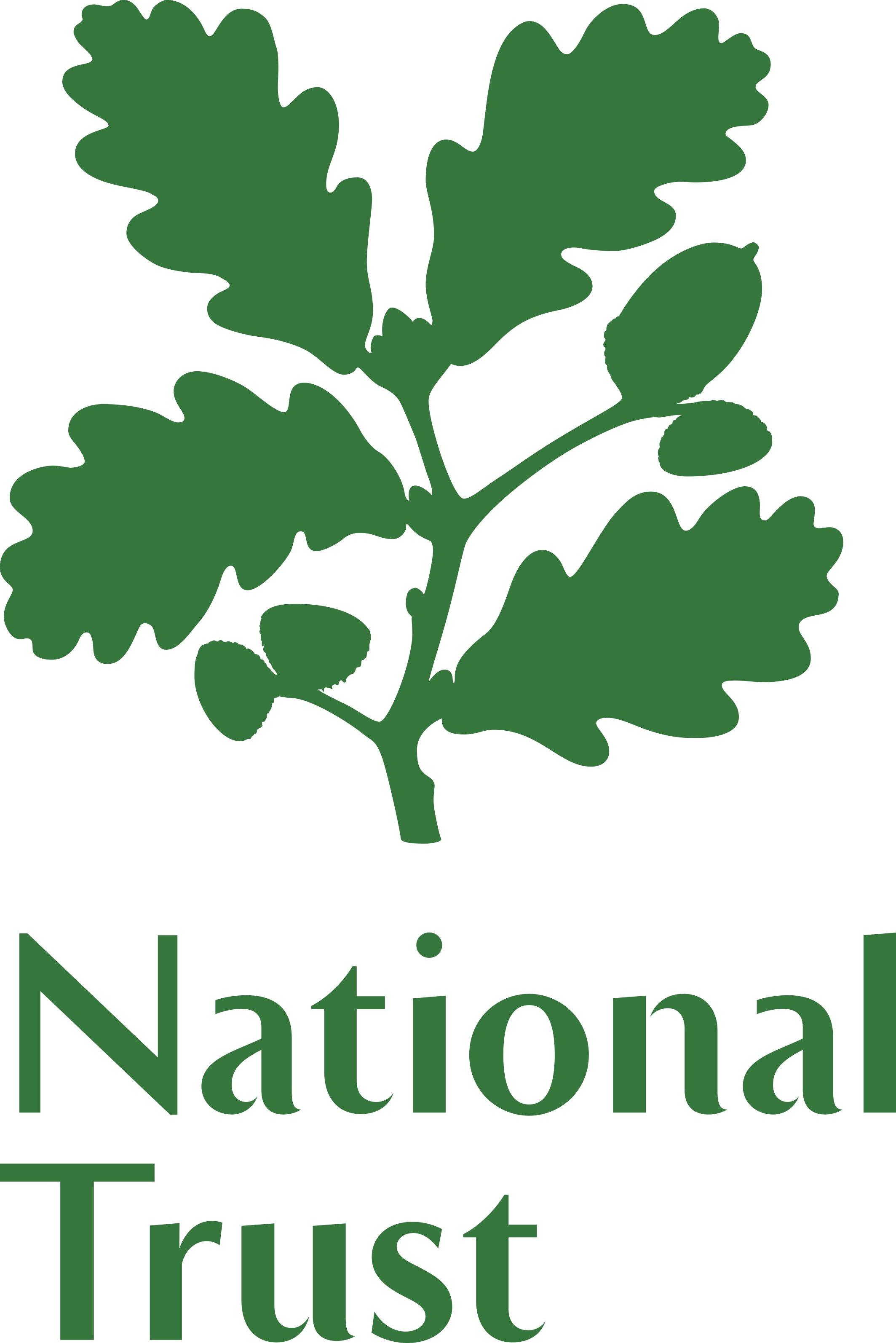 NT Logo (Hi-res)