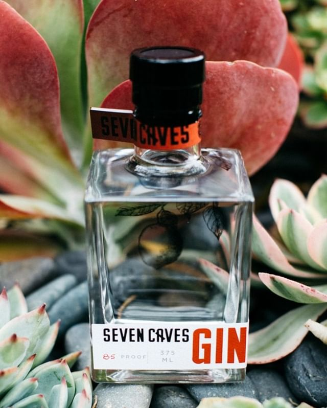 Each batch of our gin is crafted using only seasonal botanicals,  distilled in house for truly flavorful grain to glass booze. Our ludicrously small-batch Spring Gin is now sold out!⠀⠀⠀⠀⠀⠀⠀⠀⠀ -⠀⠀⠀⠀⠀⠀⠀⠀⠀ -⠀⠀⠀⠀⠀⠀⠀⠀⠀ -⠀⠀⠀⠀⠀⠀⠀⠀⠀ -⠀⠀⠀⠀⠀⠀⠀⠀⠀ #sevencaves #sevencavesdistillery #sevencavestastingroom #sevencavessandiego #youstaythirstysd #sandiegobarscene #graintoglass #craftspirits #sandiegodistilling #sandiegodistillery #madeinsandiego #distillery #distilling #drinkgin #gincocktails #imbibe #imbibegram #sandiegodrinking #drinksandiego #drinklajolla #drinkstagram #sandieogeater #zagat #coastcreative