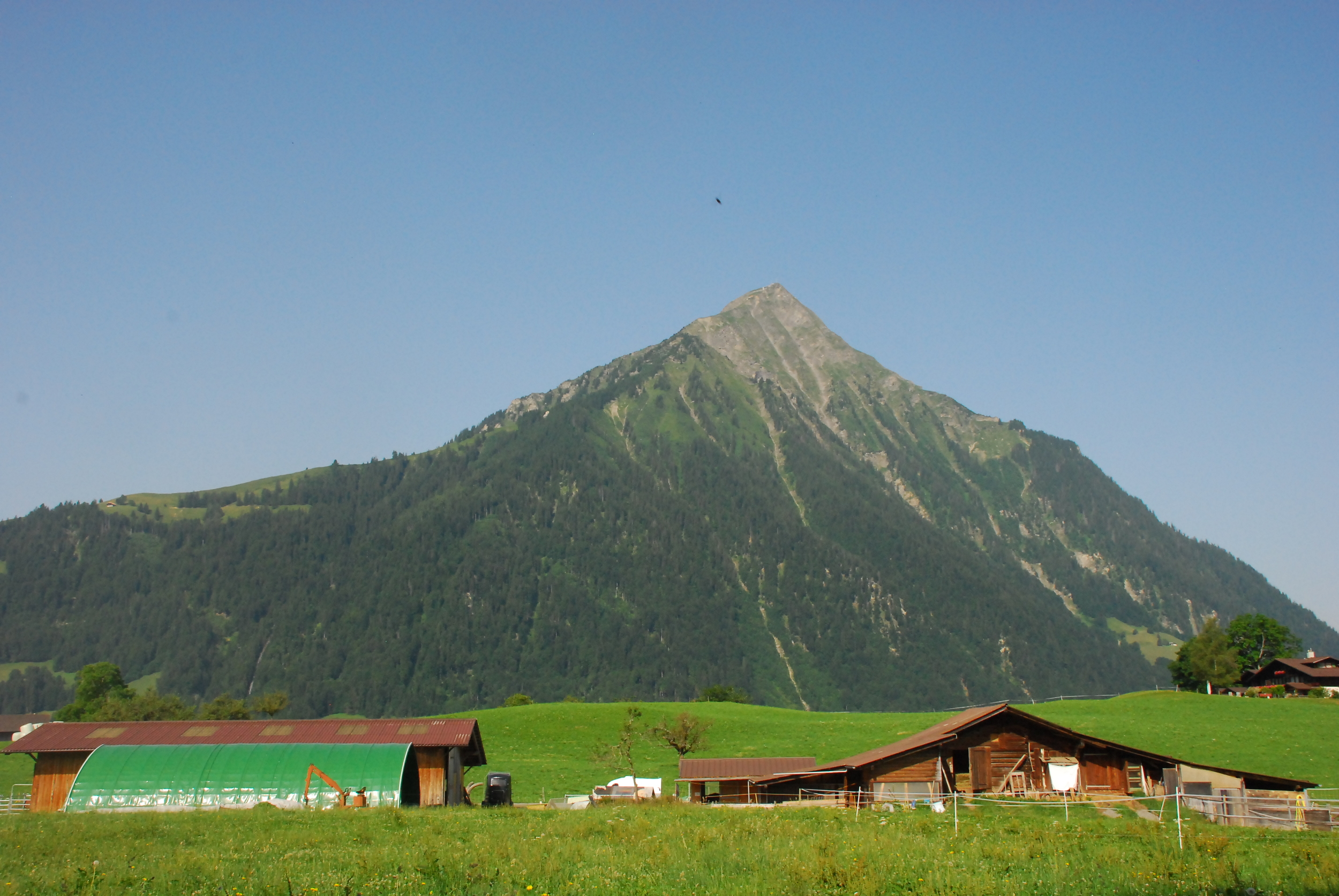 Mountain Ranch in Aeschi BE