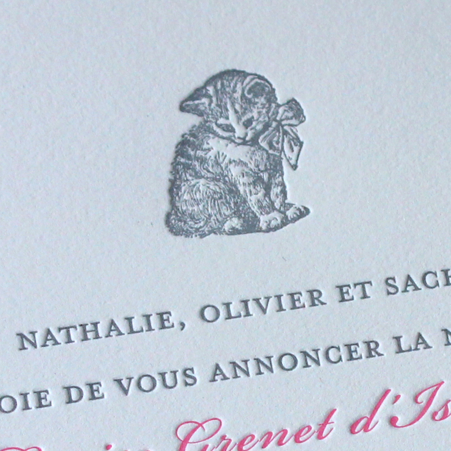Pink and Gray Kitten Letterpress Baby Announcement
