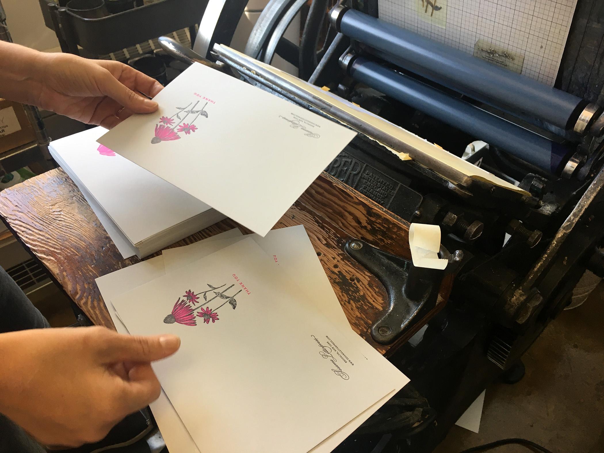 Echinacea-1.jpg