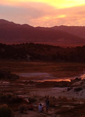 9.29.15  > Hot Springs > Photo > Lee Vining, CA > Giraffe Necks > NOT AVAILABLE FOR PURCHASE
