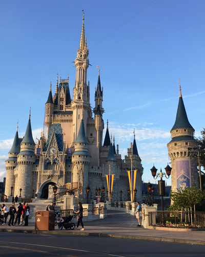 12.1.17  > Stars By Day > Photo > Disney World > NOT AVAILABLE FOR PURCHASE