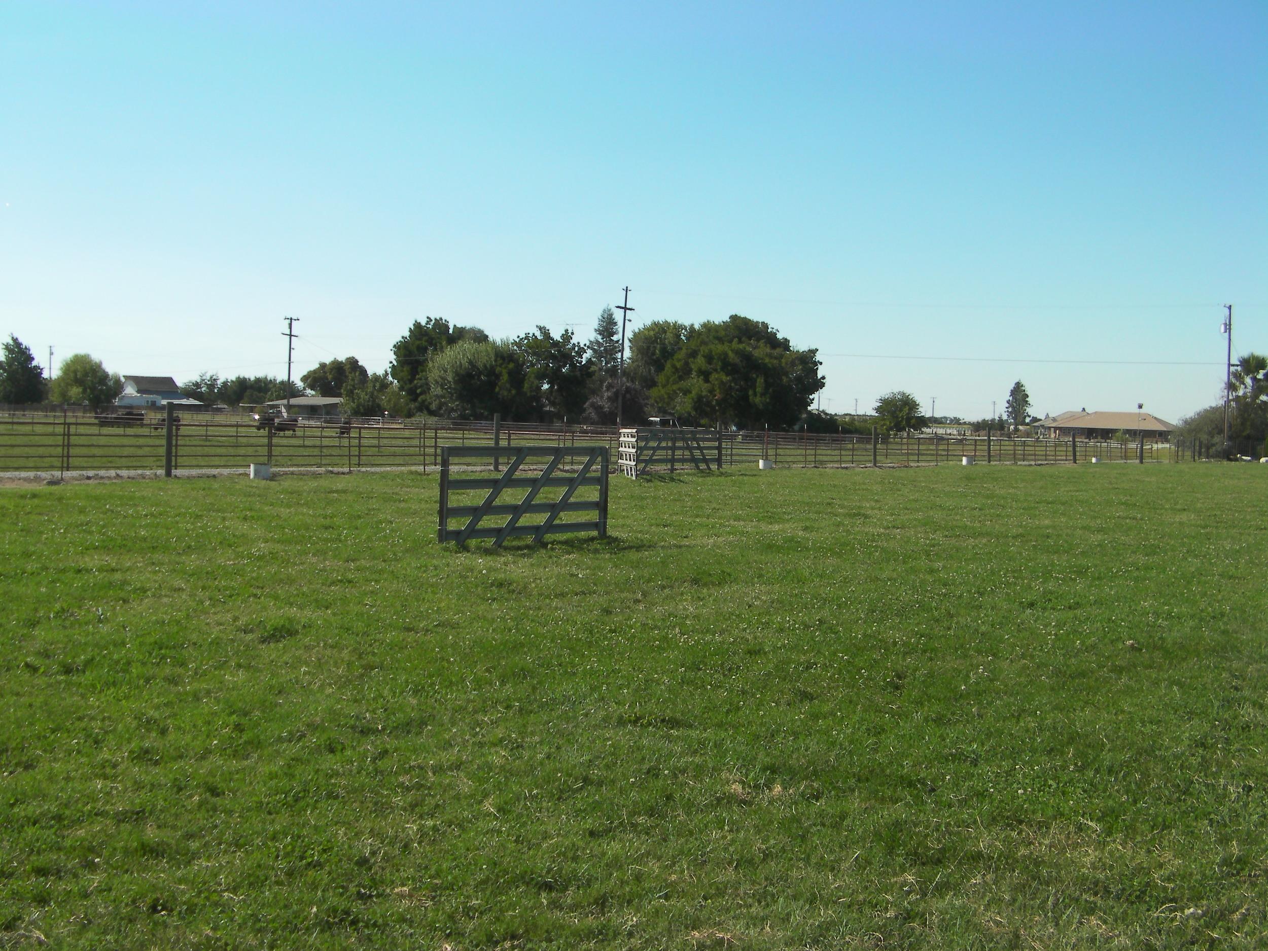 The big field - 130' x 200'