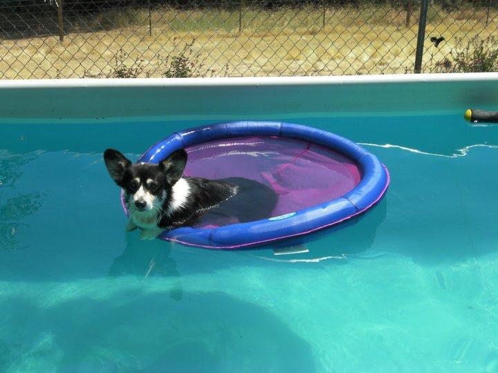Tessa in her floaty