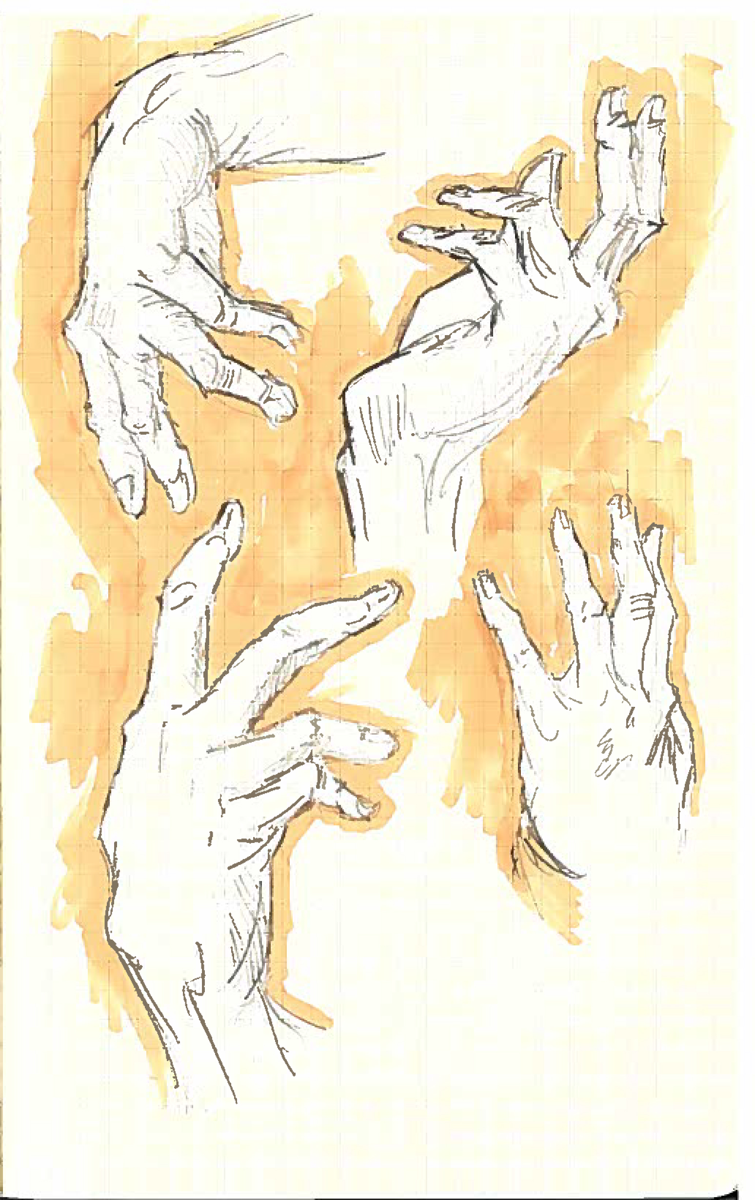 Hands 8.jpg