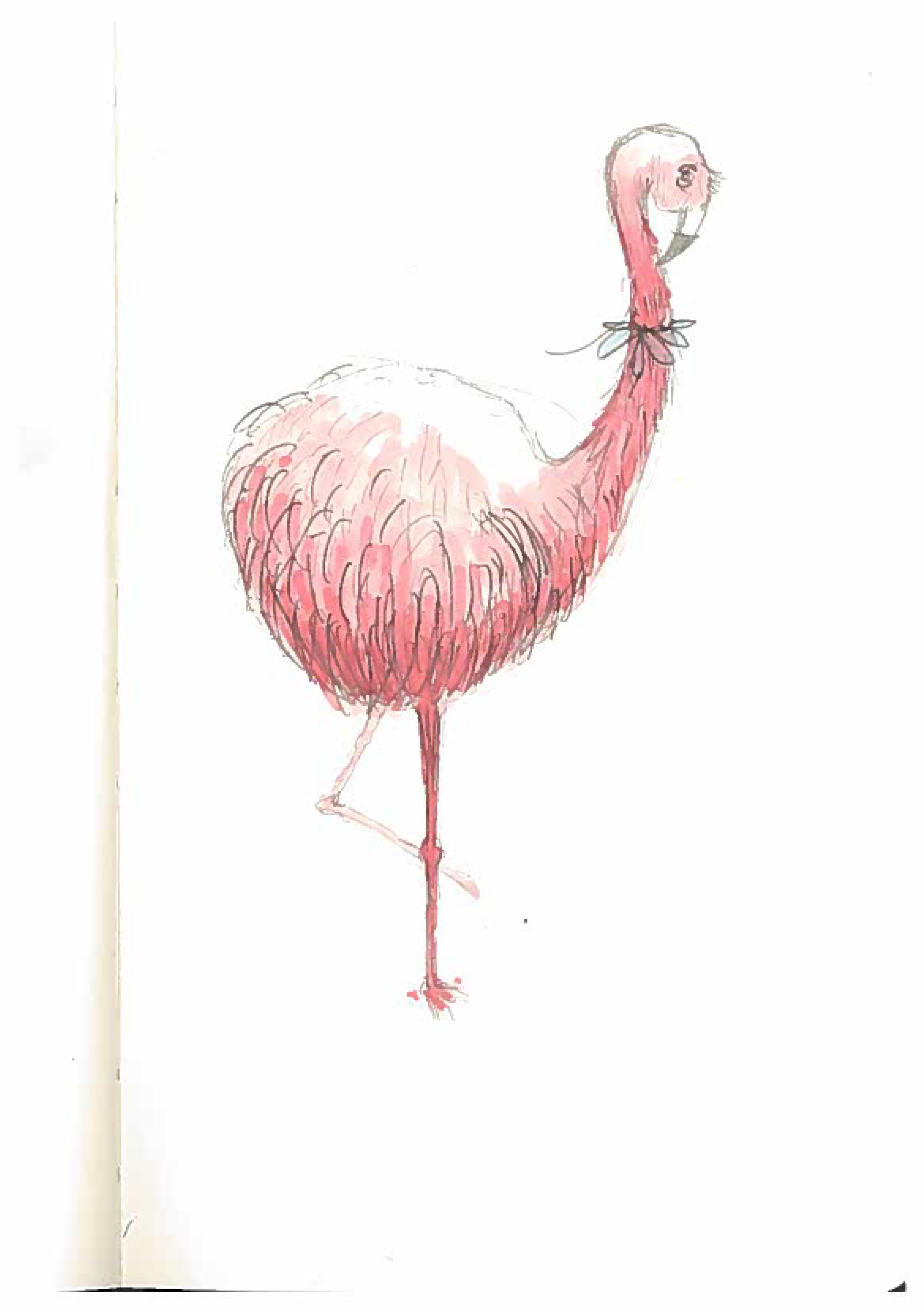 Flamingo_R1.jpg