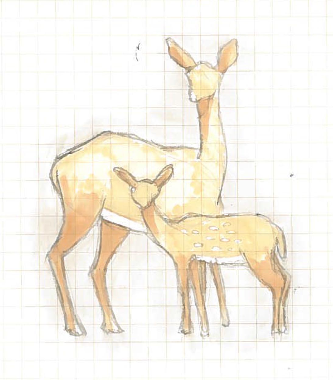 Deer1A.jpg