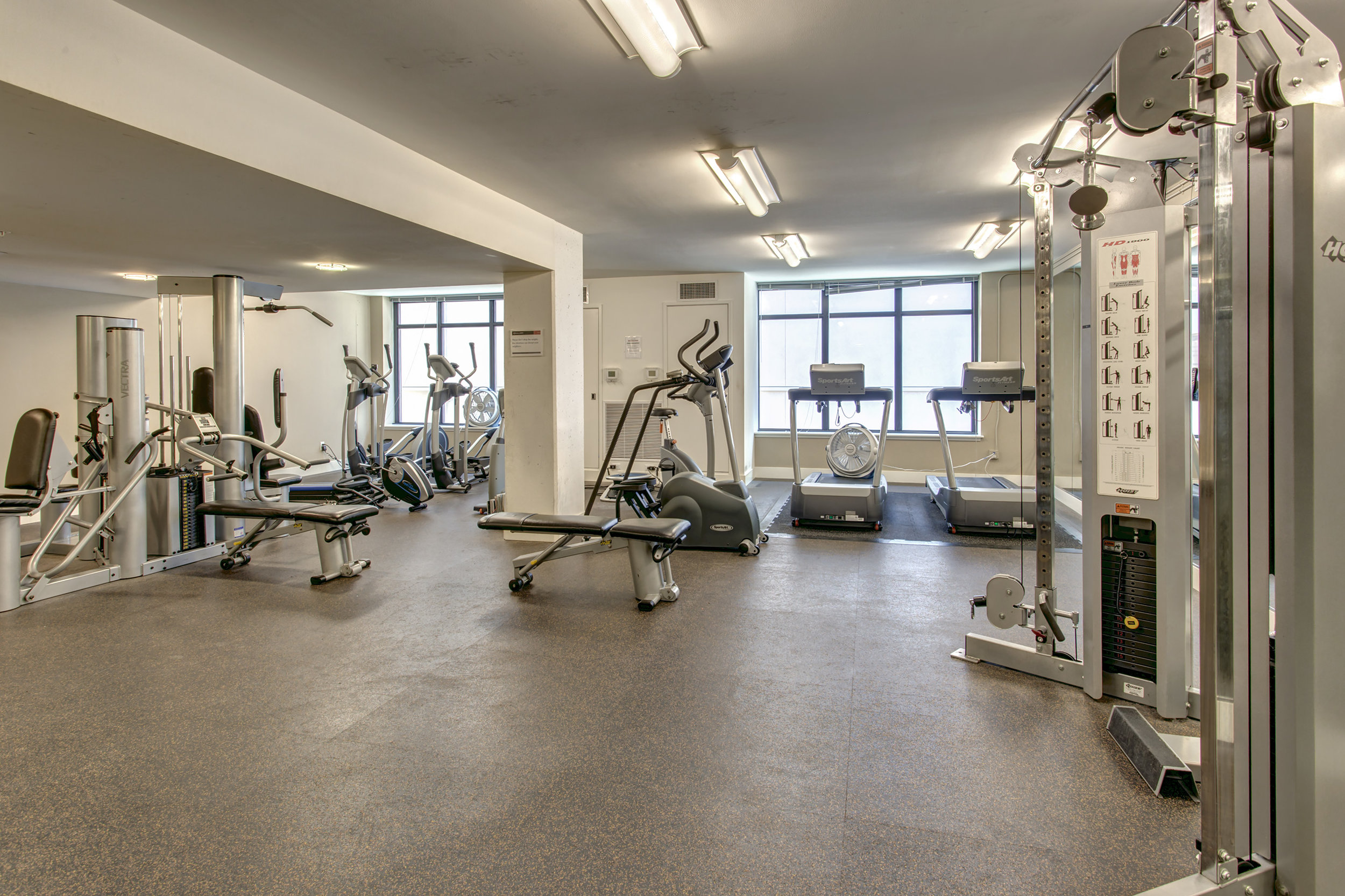 Gym! There's a gym! Lift them gym things.