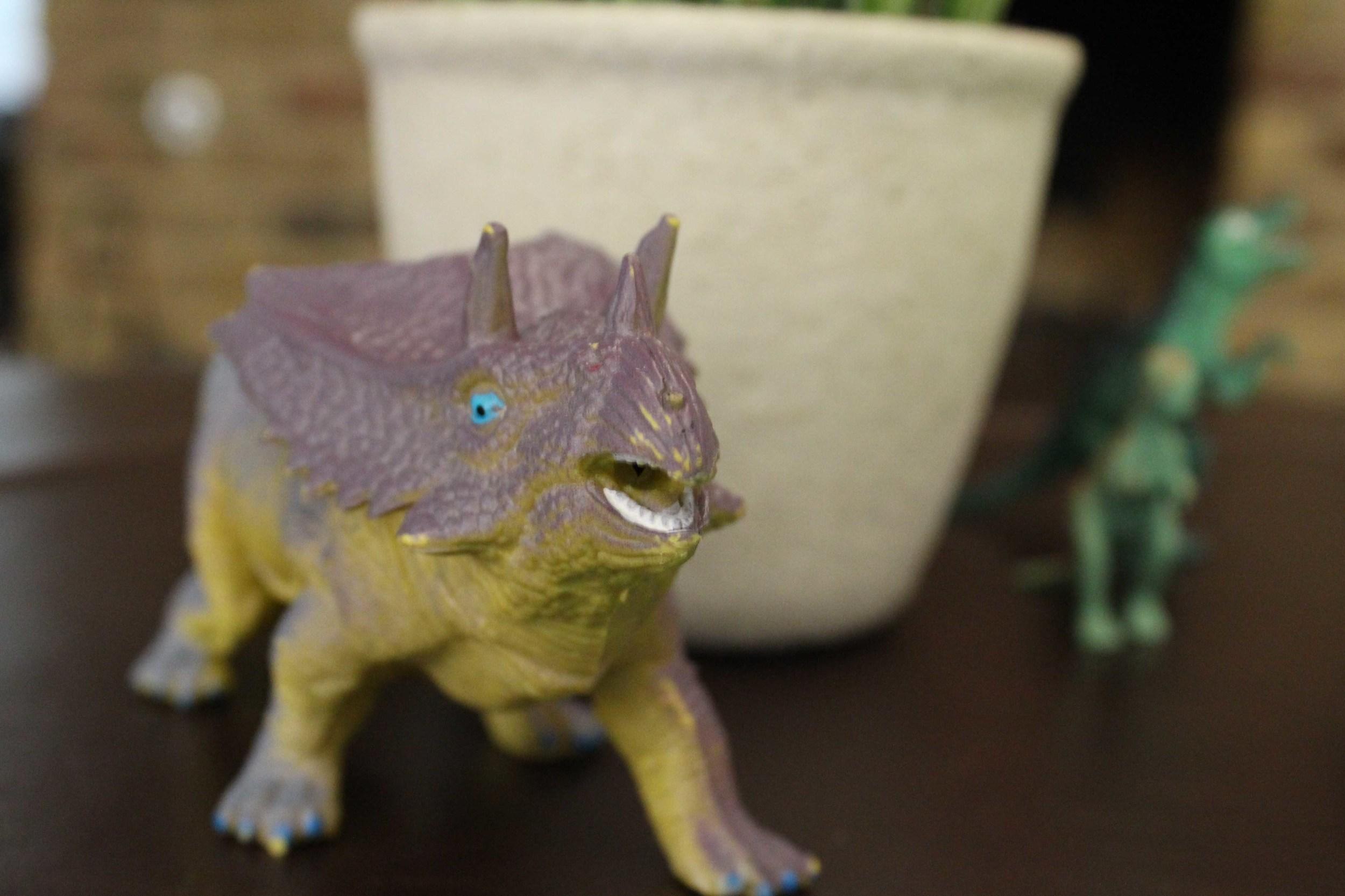 dinosaur party boys bookclub