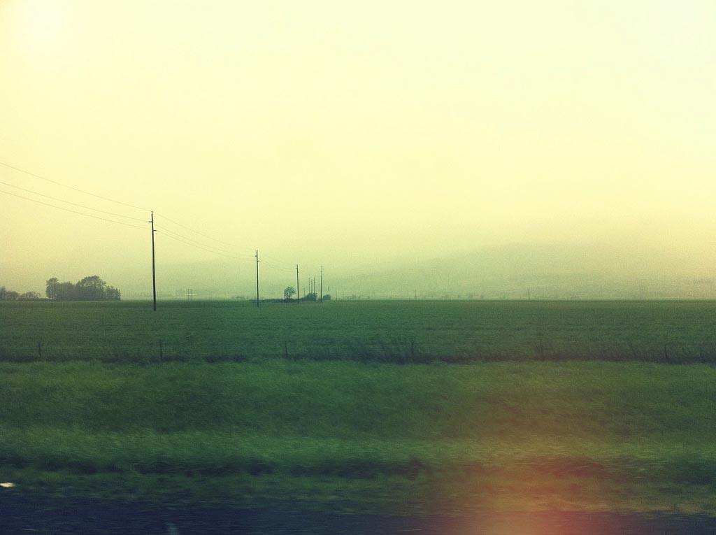 Road Trippin.jpg