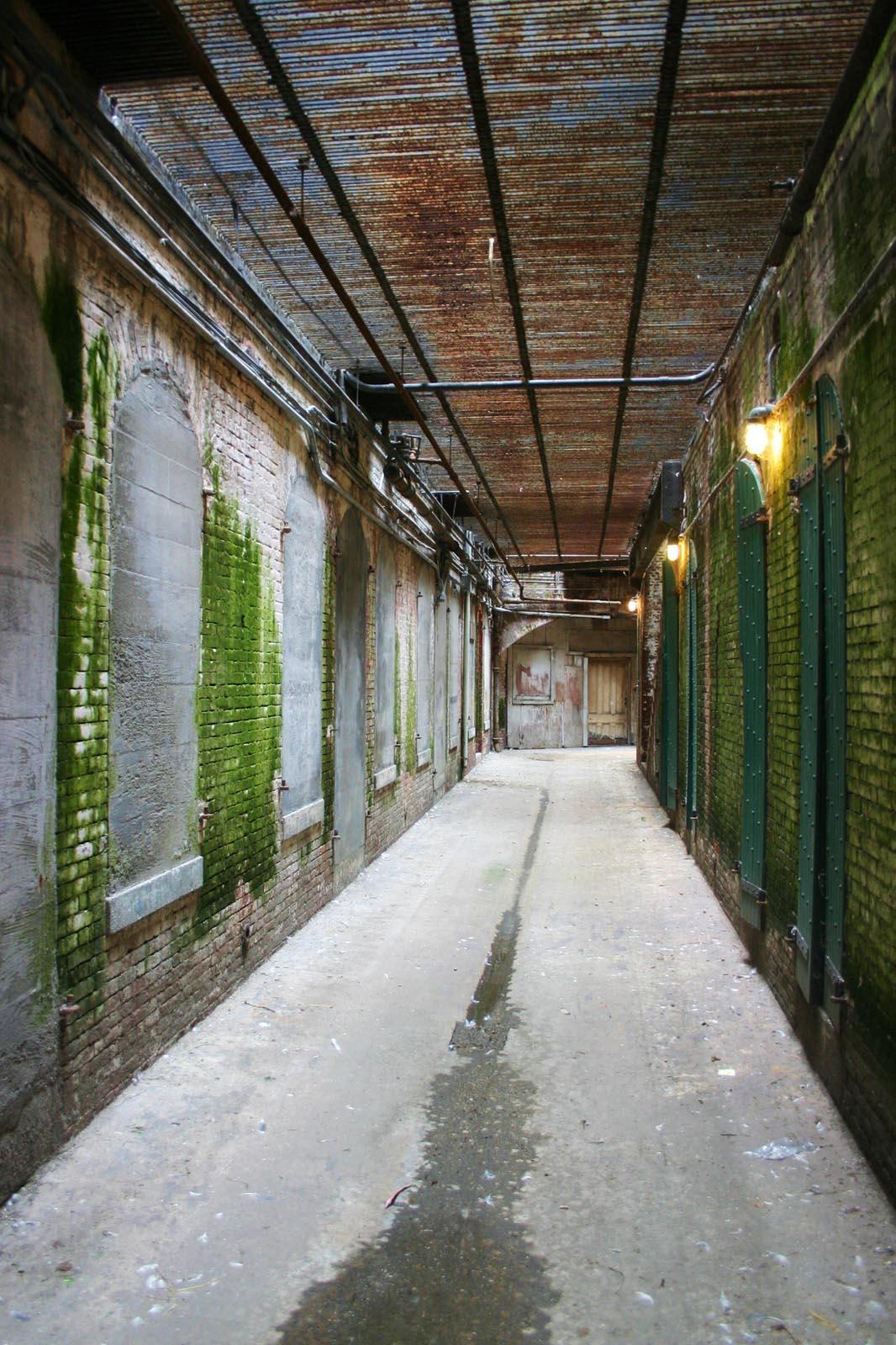 ! the silent hallway.jpg