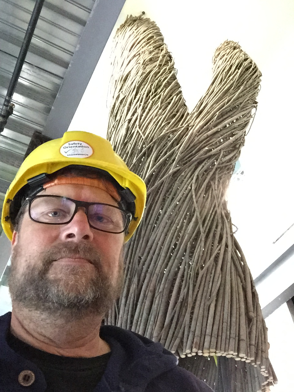 me and google tree.jpg