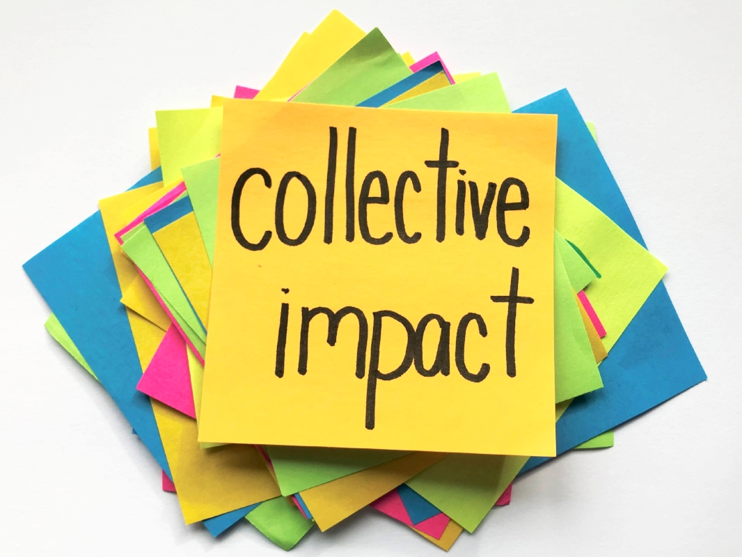 LEADERS FOR COLLECTIVE IMPACT : CDVC - Fall 2018 - Calgary
