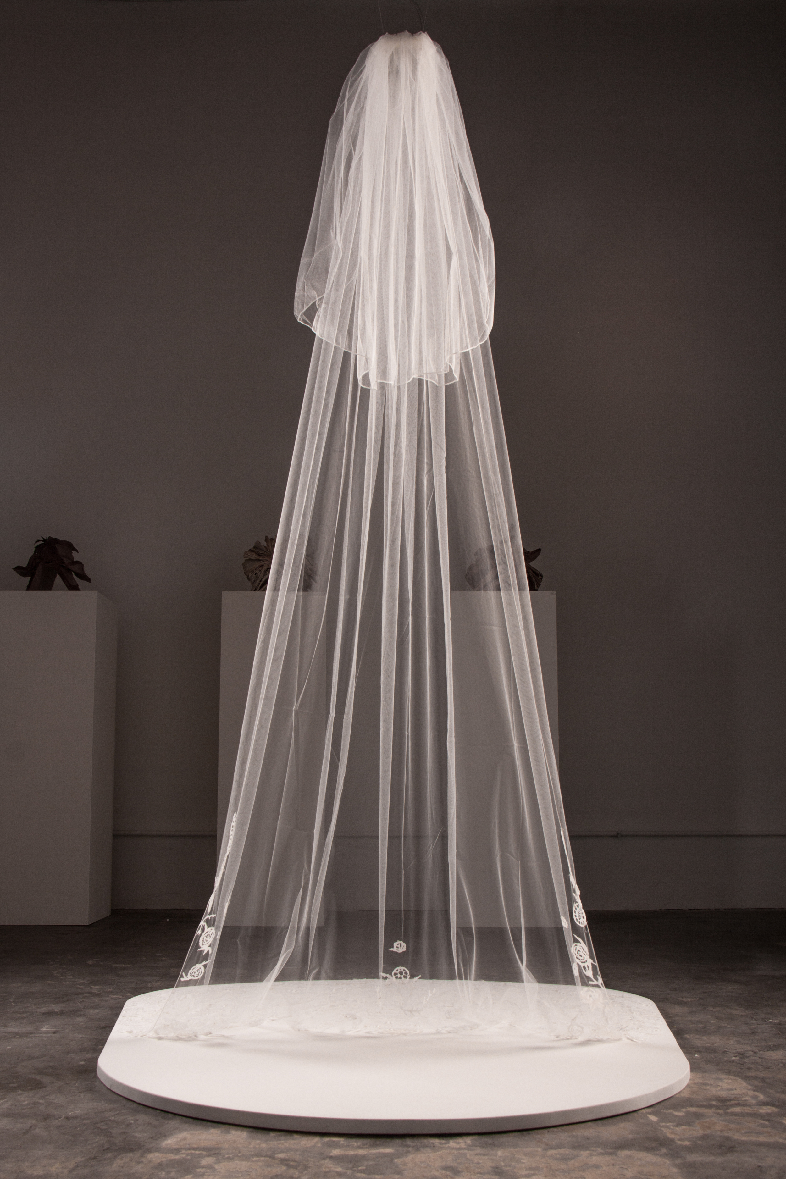 Veil KATE CLEMENTS, 2013 PARAGRAPH GALLERY SHOW, FULL SIZED JPG-8.jpg