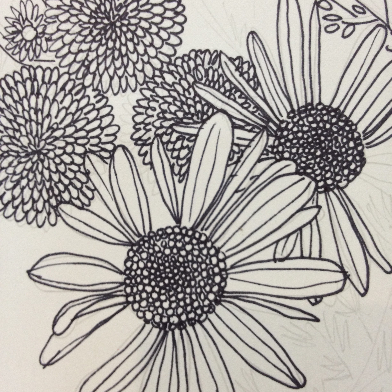 Sarah Watson Illustration - Drawings