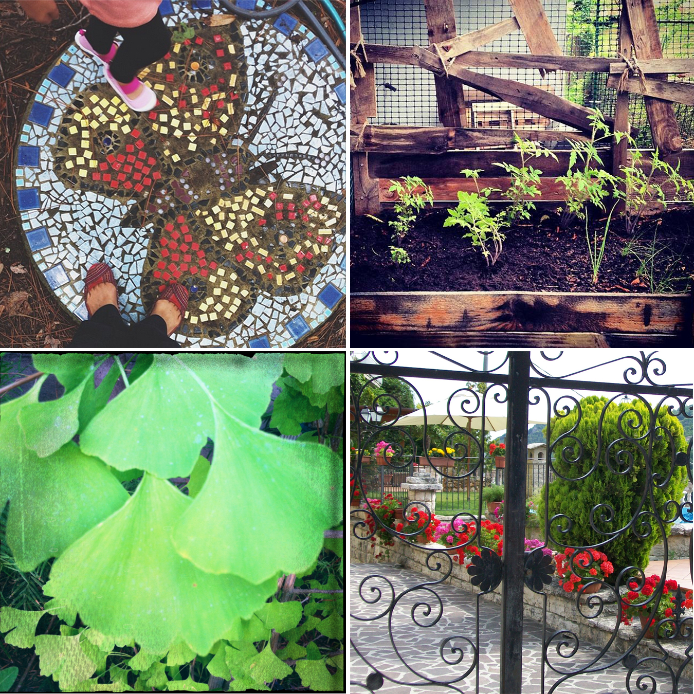"""Gardens""  Images (left to right, starting at top left): ""Mosaic in Secret Garden"" by  Alma Pacheco , ""My Happy Little Garden"" by  Elizabeth Kaiser , ""Satin Wave"" by  Nicole Schlesinger , and ""Hidden Garden, Italy"" by Lee Avallone."