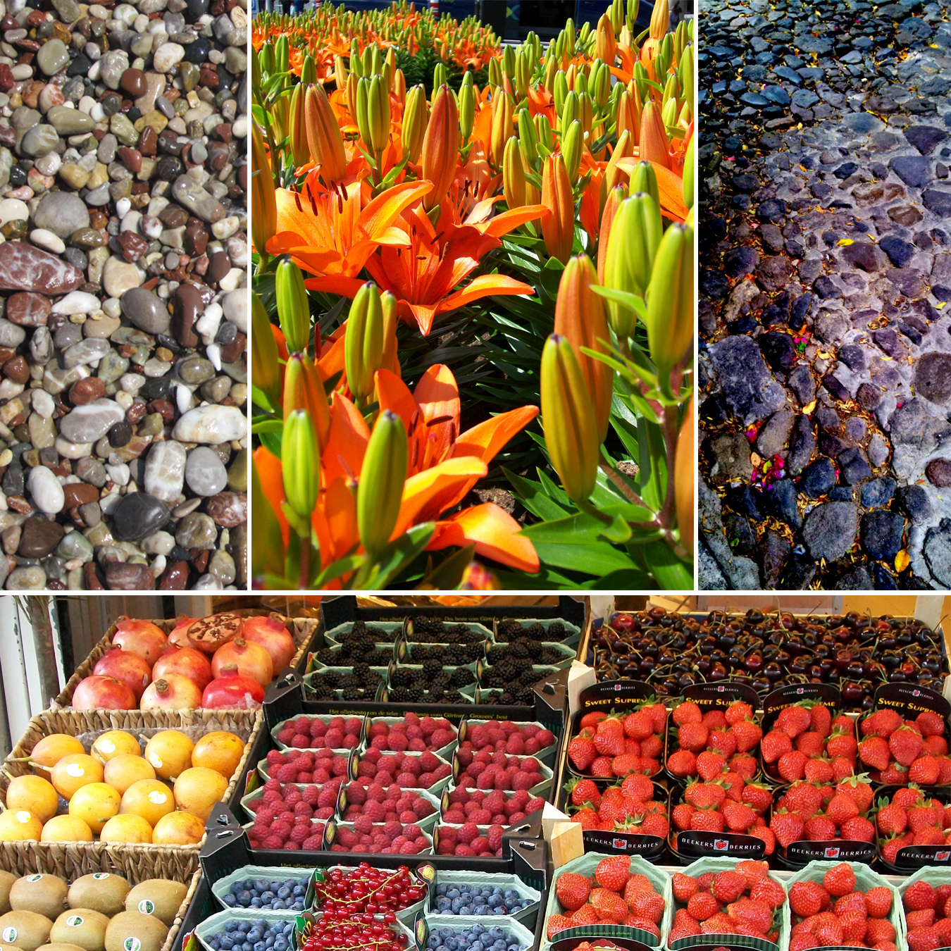 """Images (left to right, starting at top left): """"Beach Stones"""" by  Sarah Watson , """"Flowers in Amsterdam"""" by Lee Avallone, """"Streets of San Miguel"""" by Teresa Branda, and """"European Market"""" by Lee Avallone."""