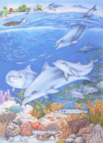 SW- Dolphin Poster copy 2.jpg