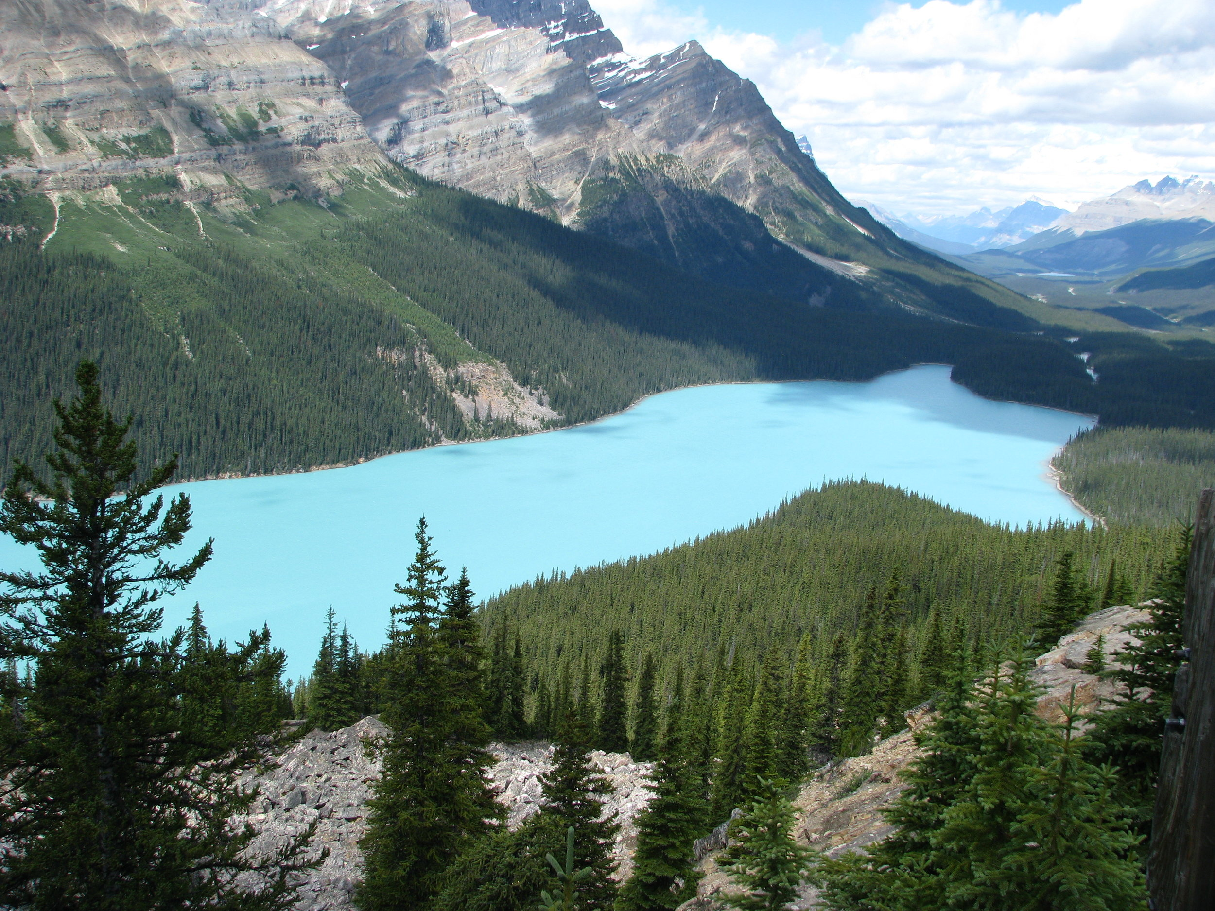 Experience Jasper National Park - Places visited: Jasper National Park, Icefield Parkway, Bow Lake, Columbia Icefield, Peyto Lake + Optional Glacier Explorer and SkywalkTour duration: From 7:30 am to 8:30 pm
