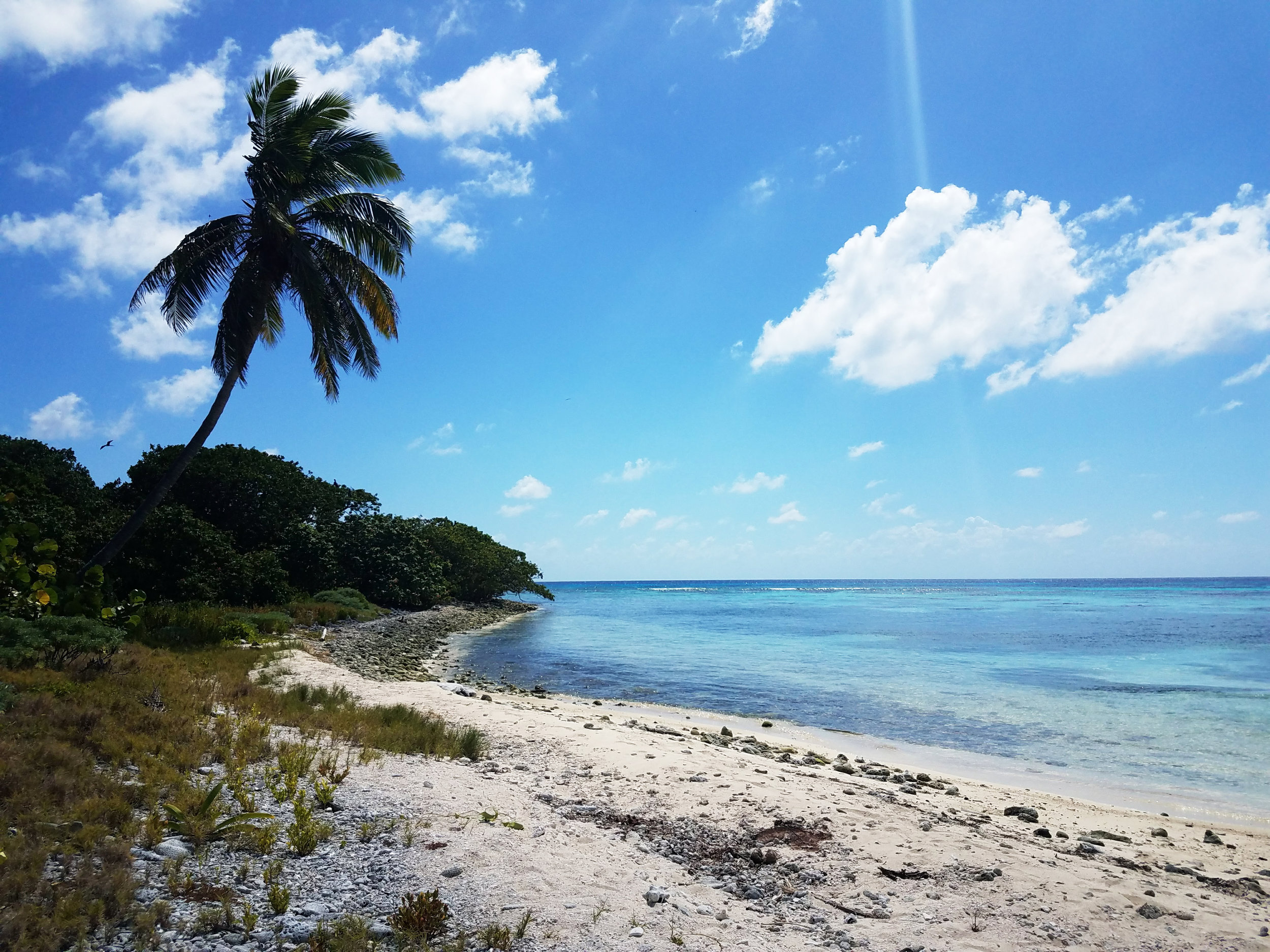 The island of Half Moon Key was like something out of a fairytale. A worthwhile stop on a scuba diving adventure.