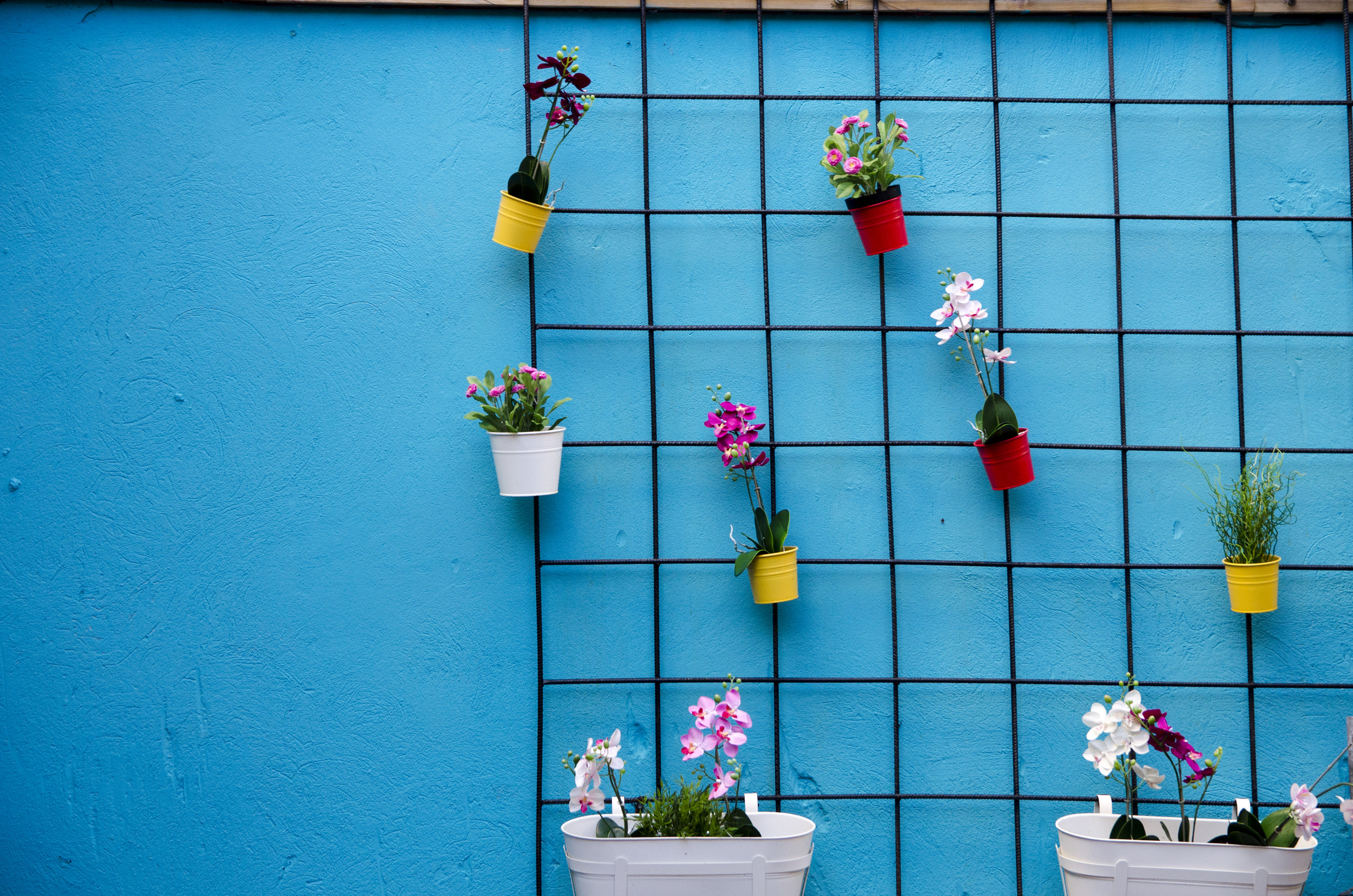 A wall of faux flowers hangs optimistically in the chilly winds of an  Icelandic winter.