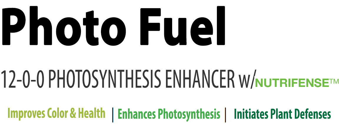 Photo Fuel.jpg
