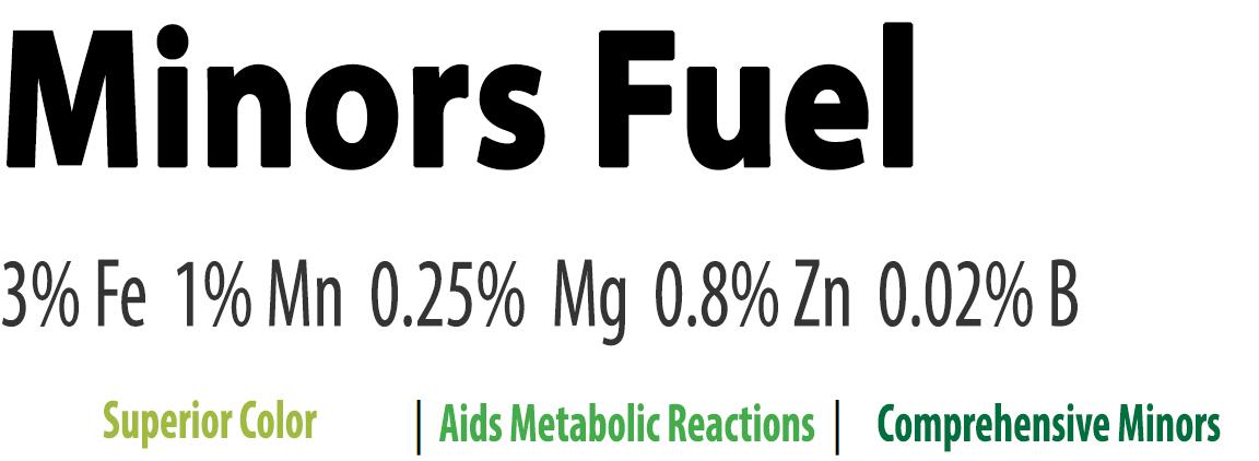 Minors Fuel.jpg