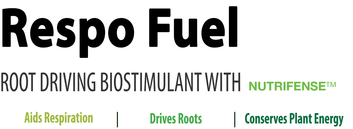 Respo Fuel.jpg