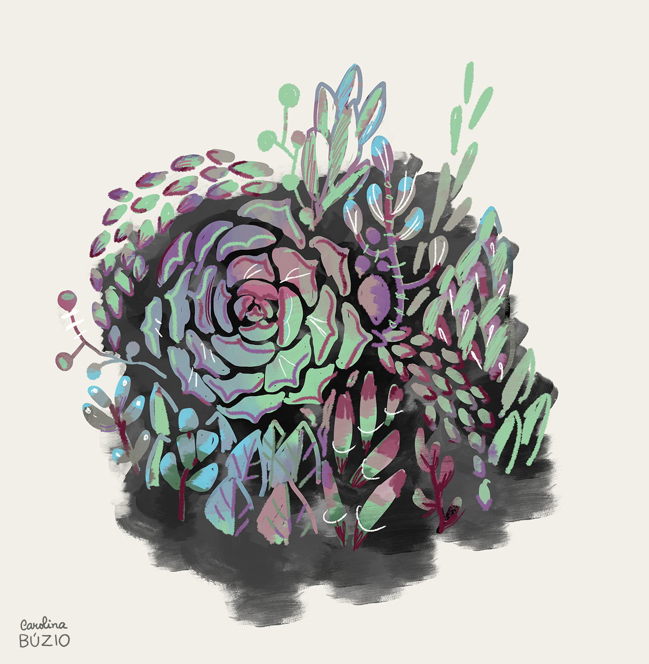 12_succulents_byCarolinaBuzio.png