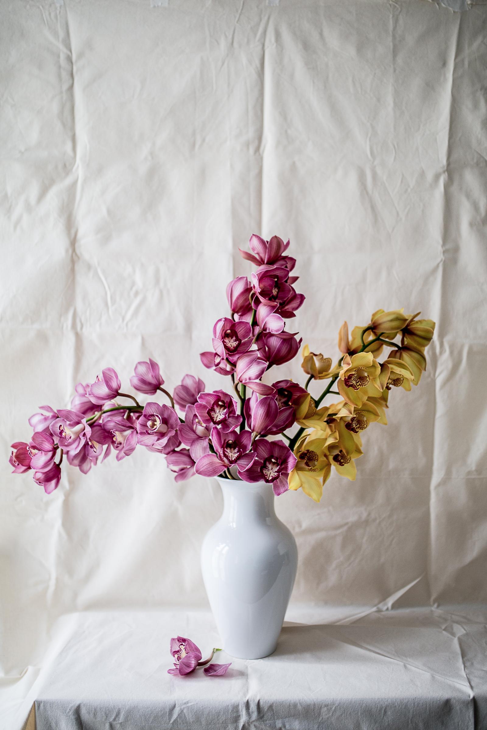 KPM Vasen -Chinesische Vase