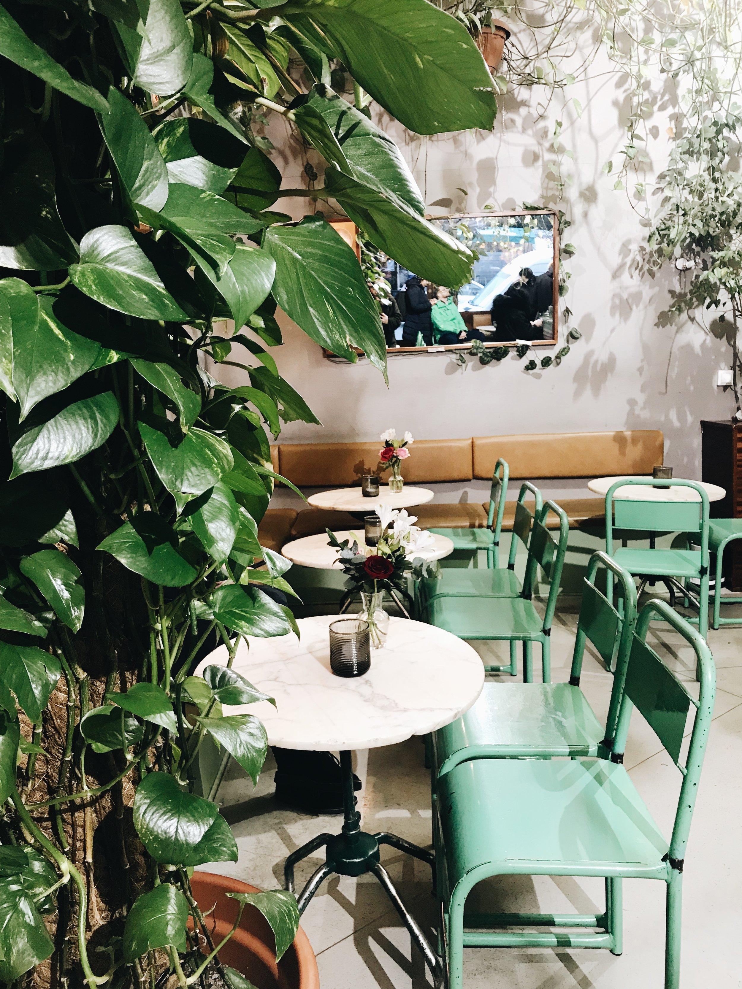 Torggata Botaniske Bar
