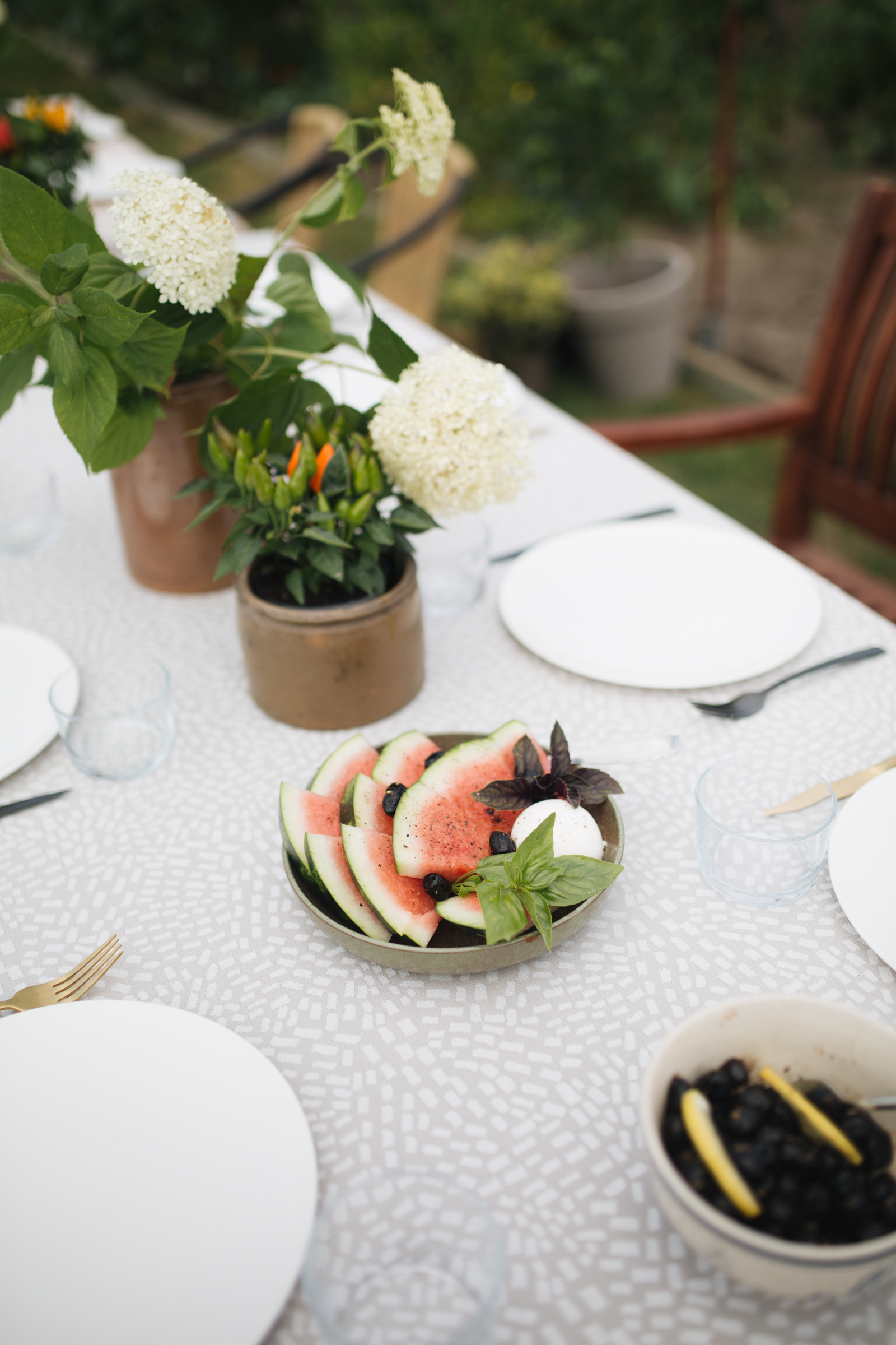 Pflanzenfreude Garten Party (5 von 16).jpg