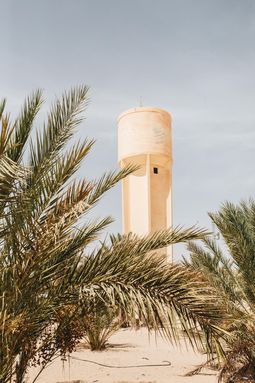 Djerba (51 von 98).jpgDjerba: Über Dromedare mit Hüten und Liegen am Pool