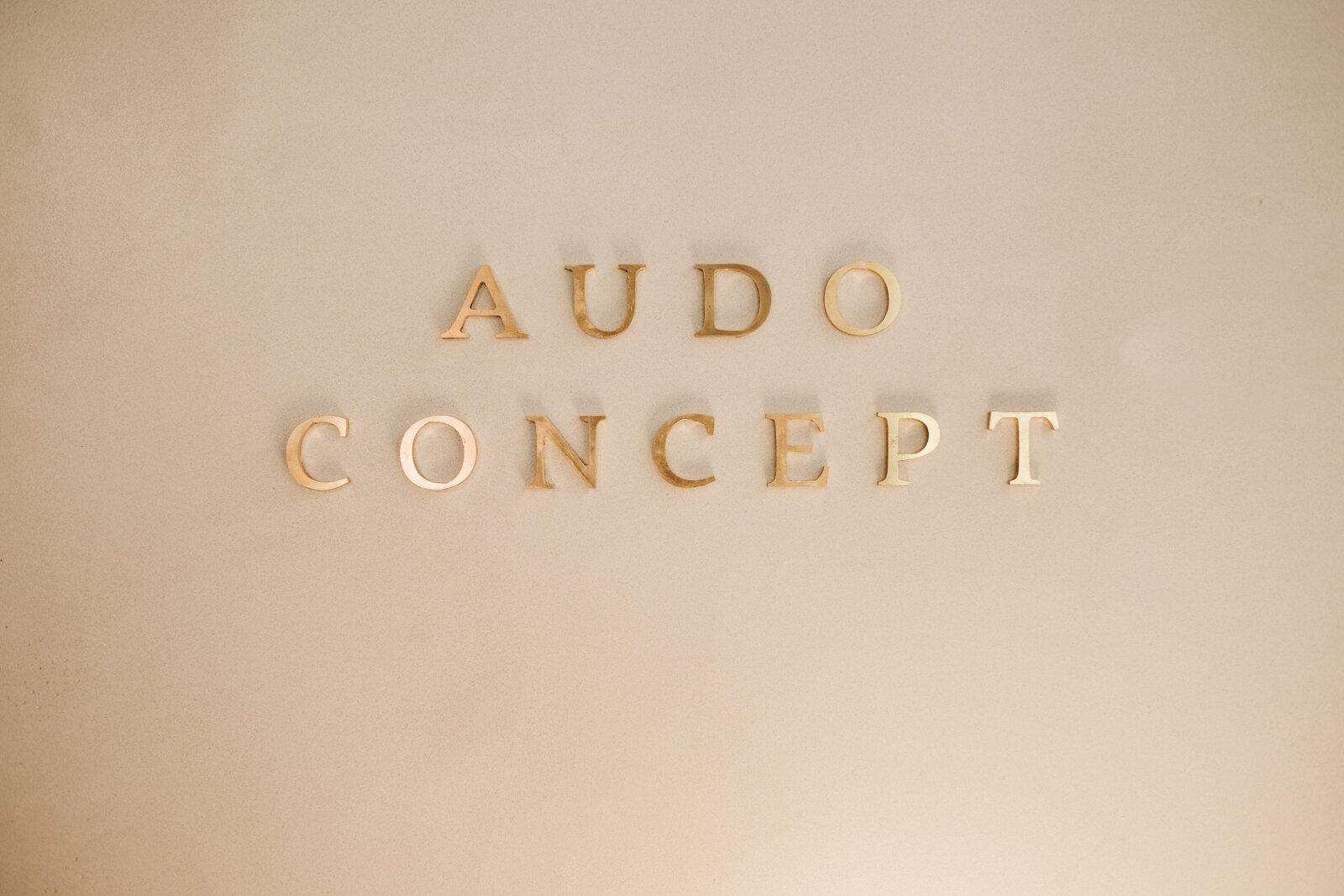The audo (19 von 85).jpg