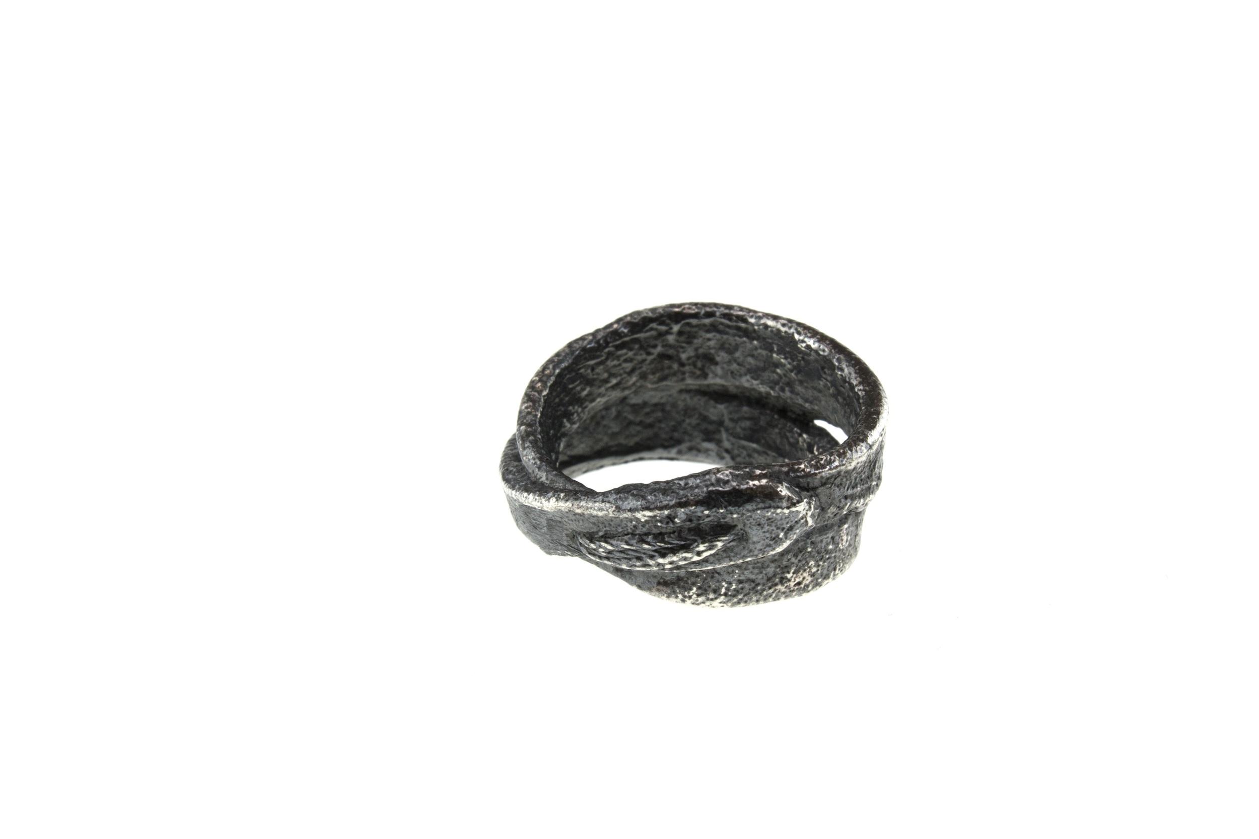 R4 Silver back2.jpg